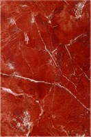 Zalakerámia Ibiza ZBE-344 falicsempe 20x30 cm